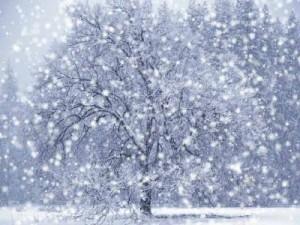 winter emotional balance