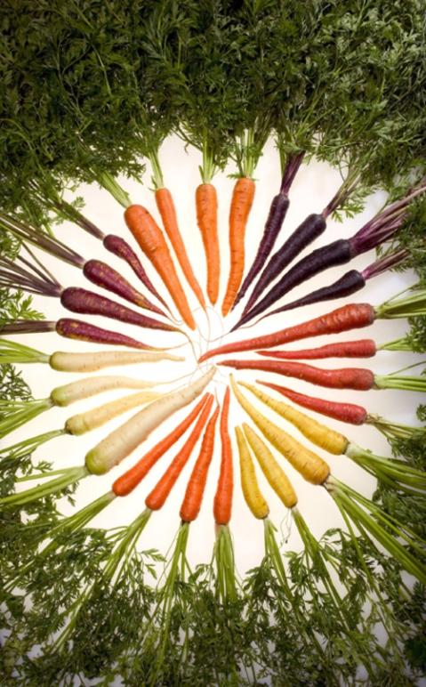carrots 11:11
